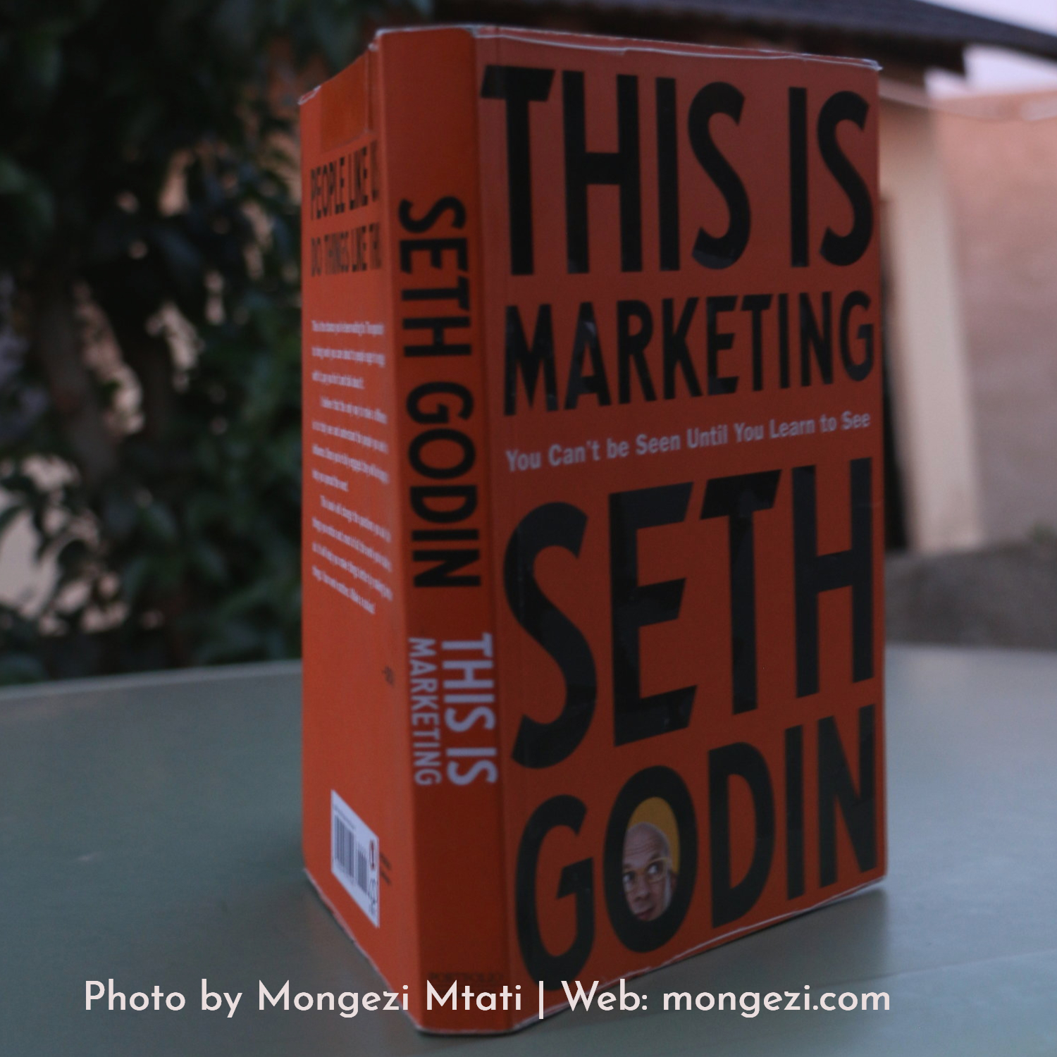 Focus on the Smallest Viable Market: This Is Marketing by Seth Godin